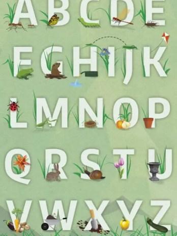 Garden Alphabet Letters Poster (11×17) – Sharp Student