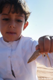 Our little boy Said is fond of searching the amazing desert species we'll find on the animal trekking. Here he's holding a baby Sand Fish.