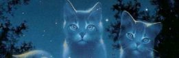 cropped-47112823-cats-wallpaper.jpg