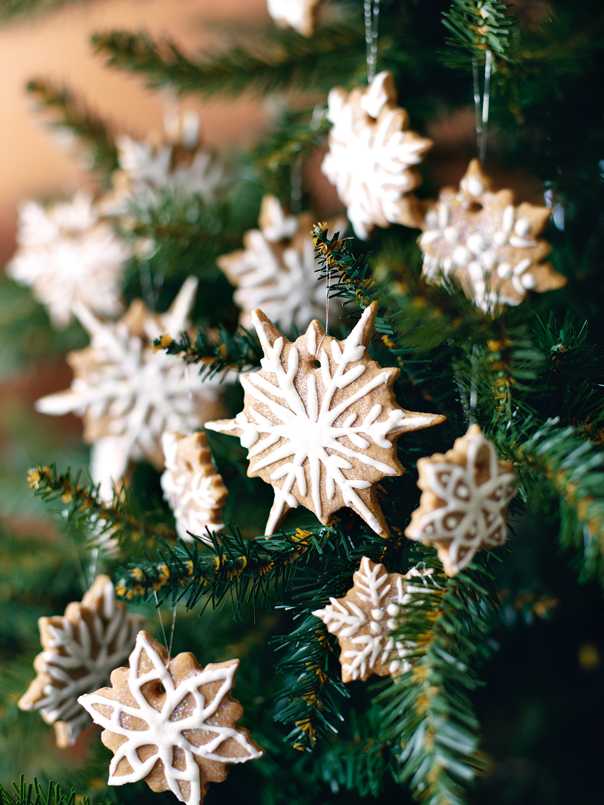 Best Edible Christmas Tree Decorations Nigella S Recipes This Month