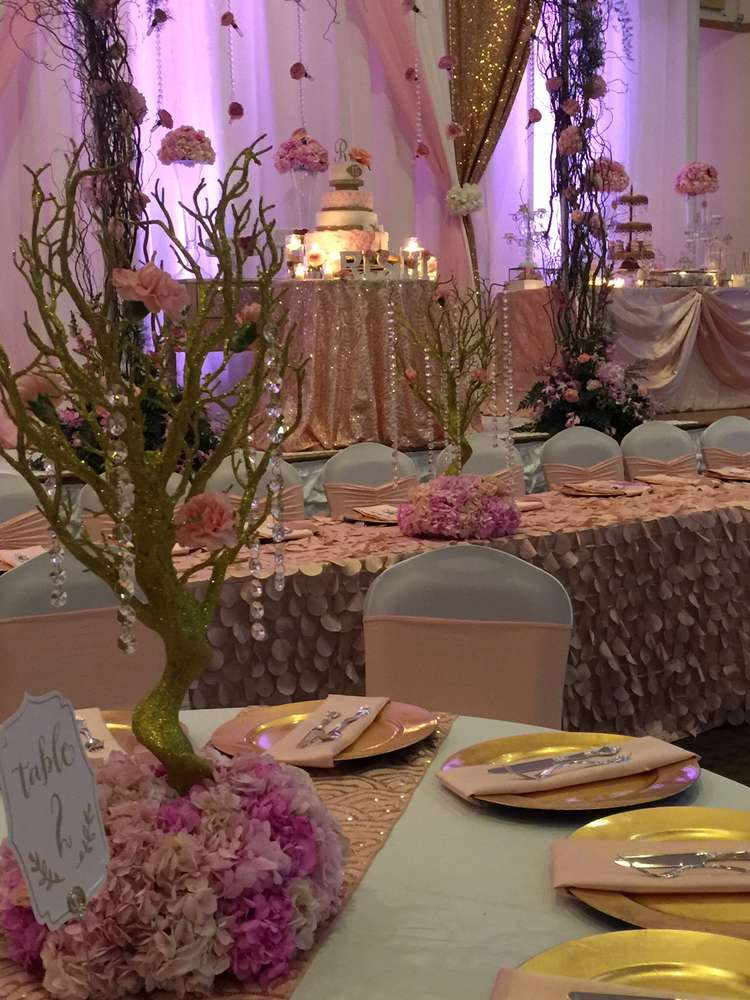 Best In The Night Garden Quinceañera Party Ideas Photo 1 Of This Month