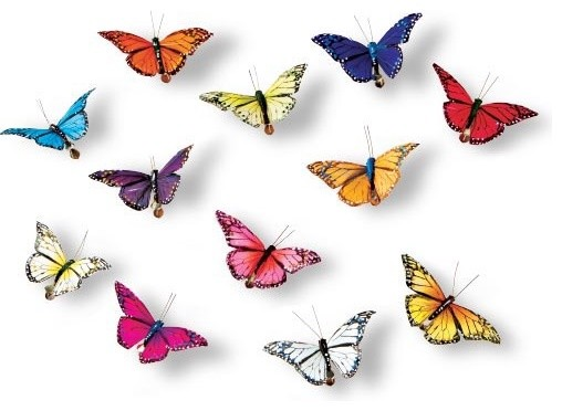 Best Butterfly Clips Home Decor This Month