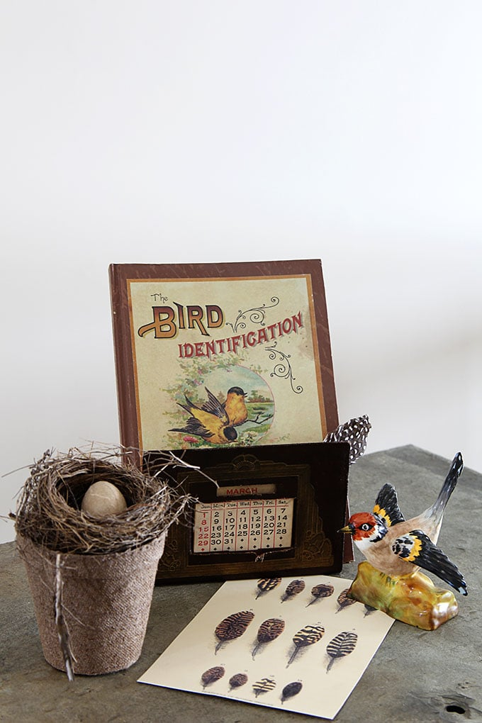 Best Vintage Bird Nest Home Decor House Of Hawthornes This Month