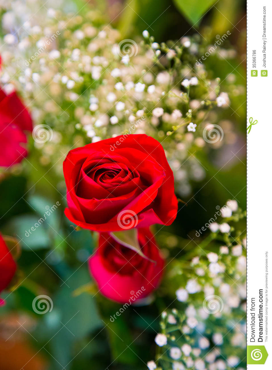 Best Wedding Flower Decor Royalty Free Stock Image Image This Month