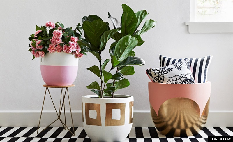 Best Online Stores For Home Décor Live Better By Ventura This Month