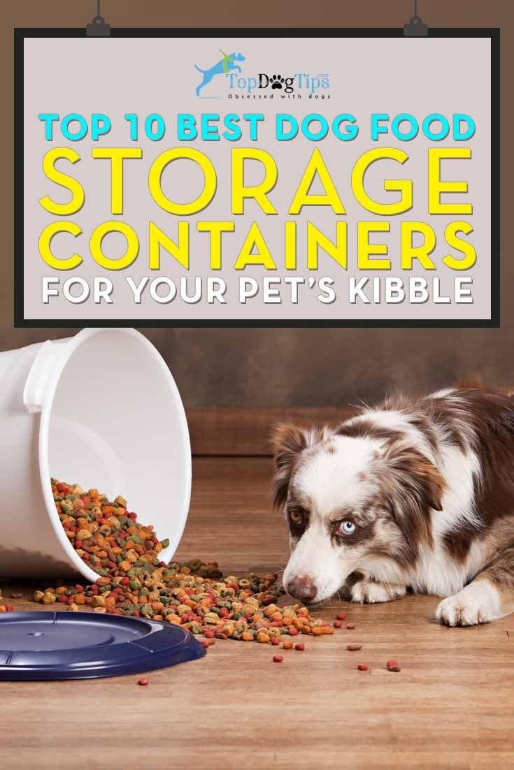 Best 25 Dog Food Containers Ideas On Pinterest Dog Food This Month