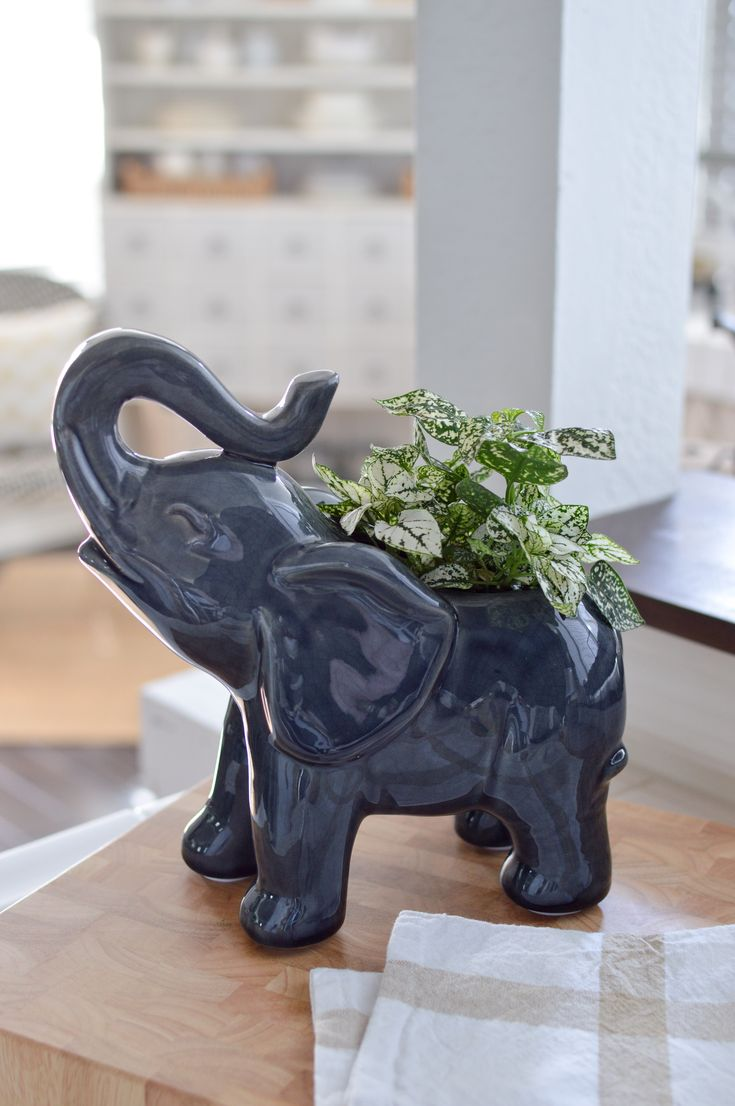 Best 25 Elephant Home Decor Ideas On Pinterest Animal This Month