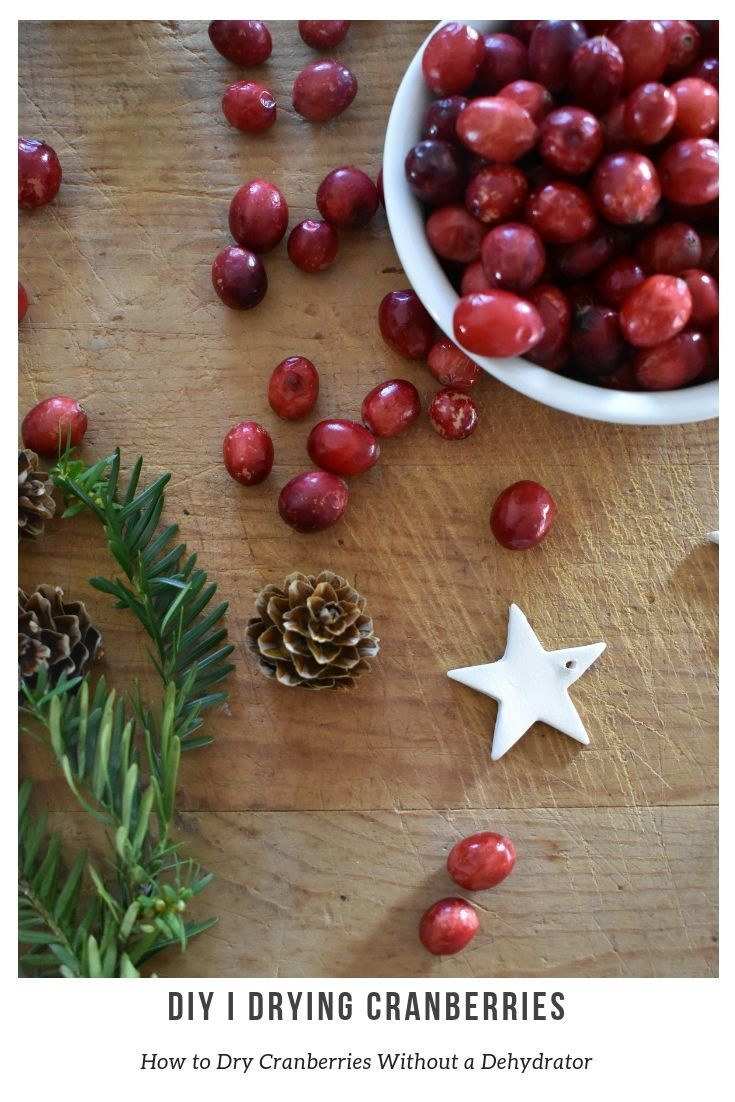 Best How To Dry Cranberries For Decorating Winter Decor This Month