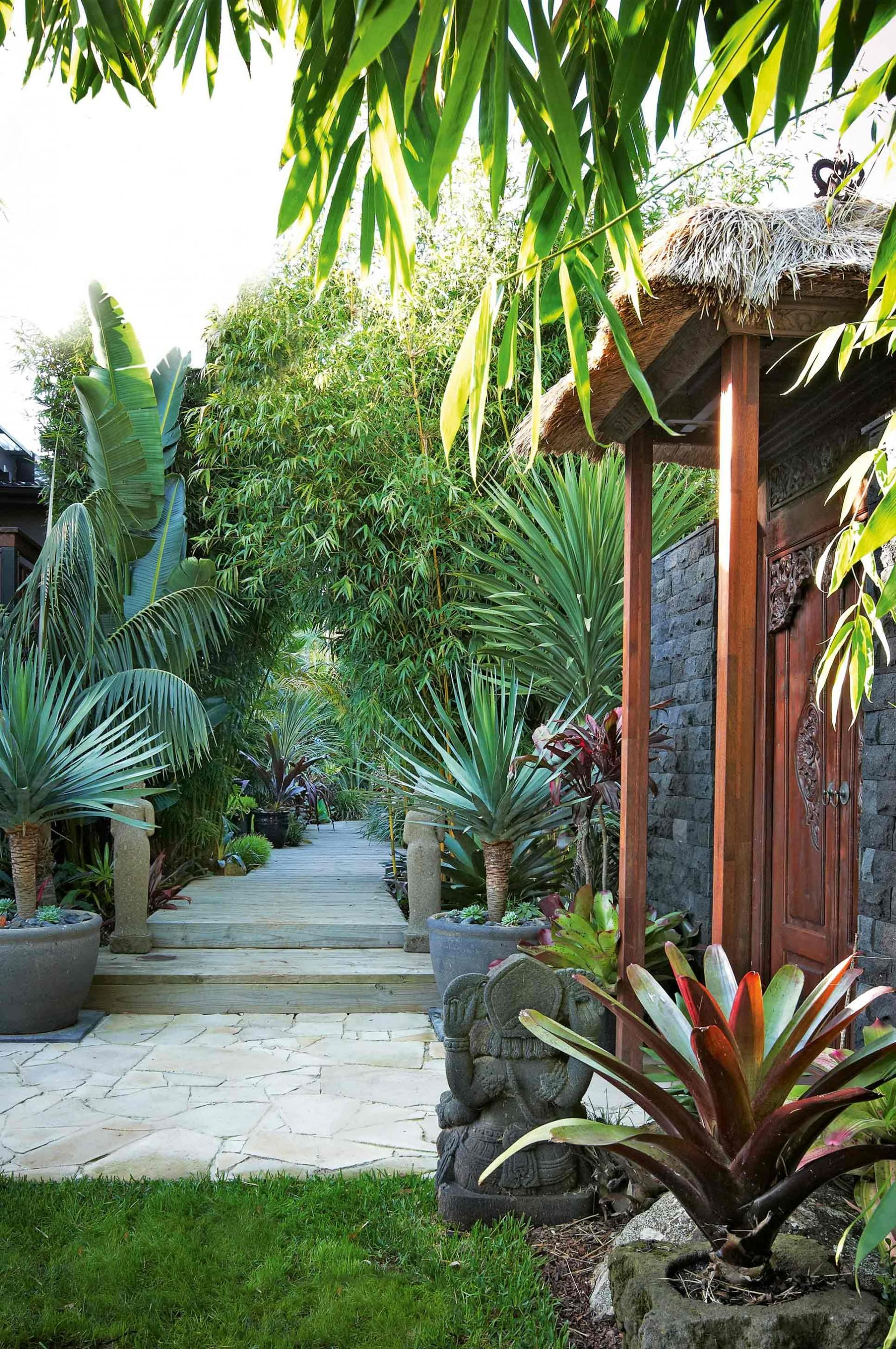 Best A Bali Inspired Garden Makeover Styling By Phoebe Mcevoy This Month
