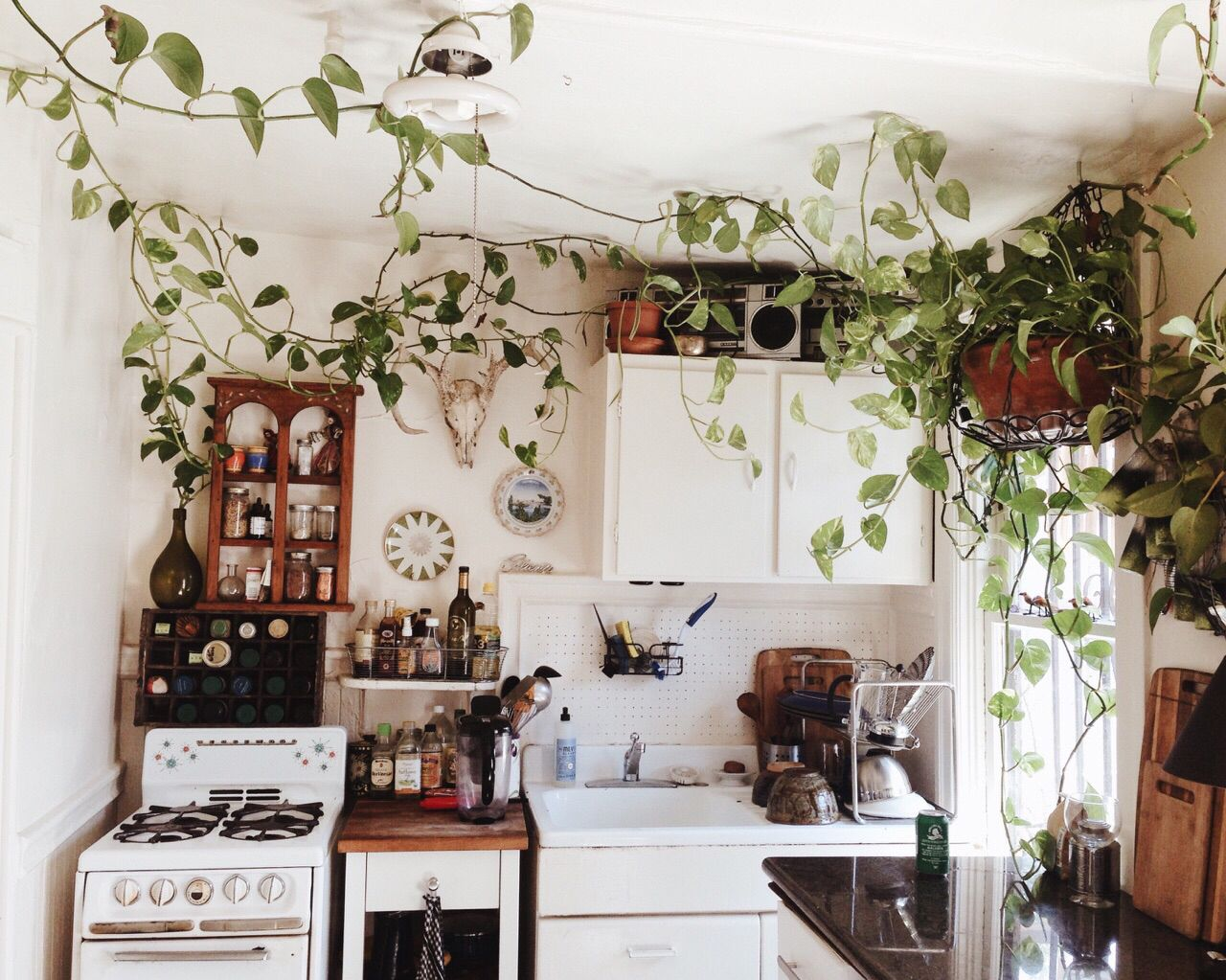 Best Earthy Clean White Kitchen ⃘ Home ⃘ Bohemian Kitchen This Month