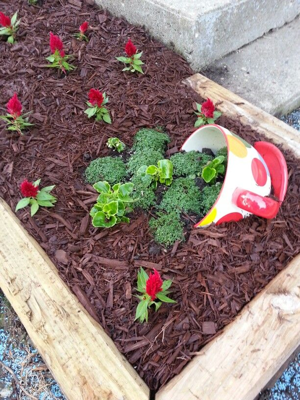Best Alice In Wonderland Themed Garden Completed Pinterest This Month