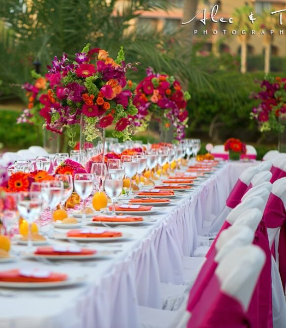 Best Magenta Pink Lotus Events This Month
