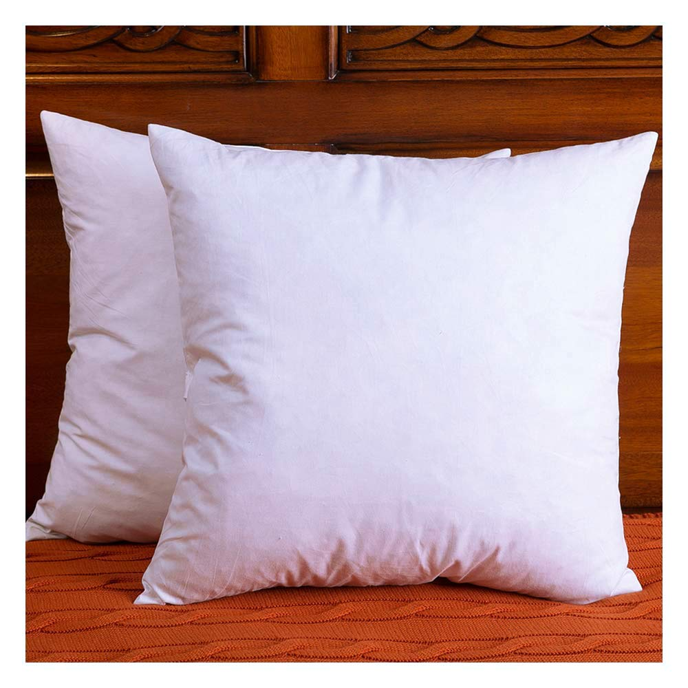 Best Set Of 2 Cotton Fabric Throw Pillows Insert Down And This Month