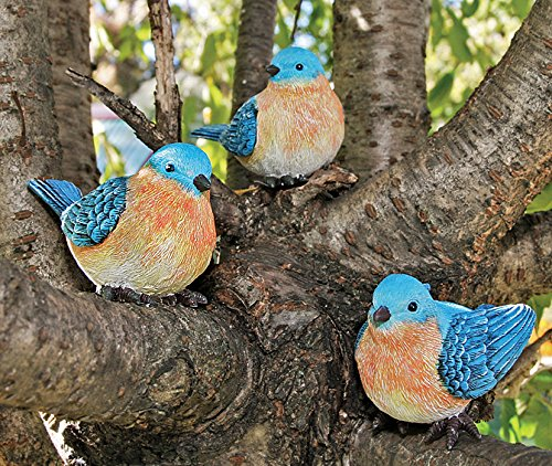Best Bird Figurines Bluebird Nature Set 3 4 Decor Table This Month
