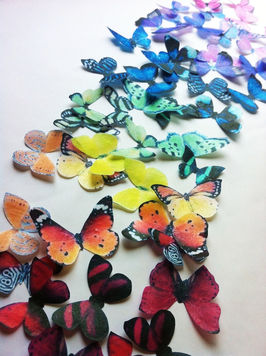 Best The Original Edible Butterflies Rainbow Collection Set Of This Month
