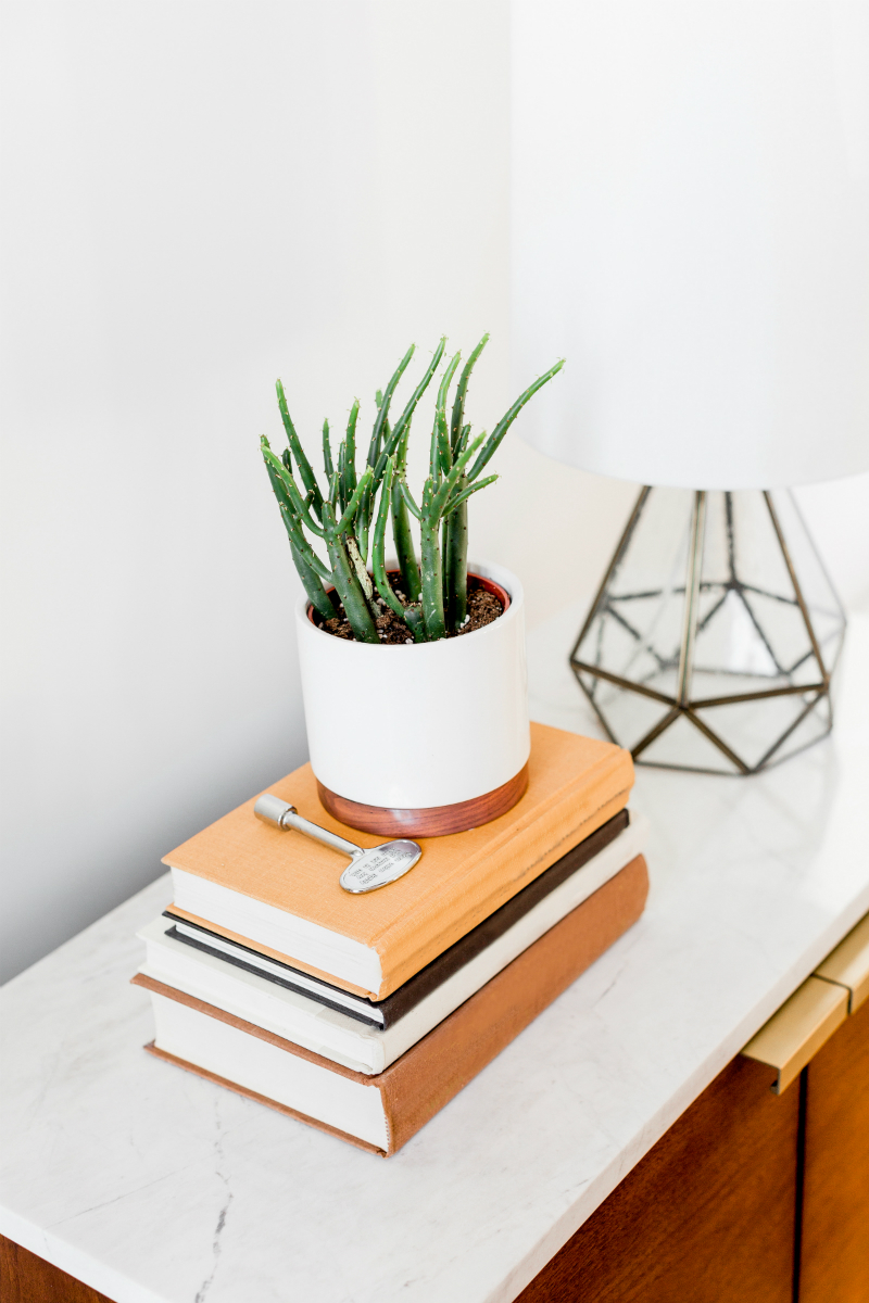 Best 14 Eco Friendly Entertaining And Home Decor Pieces From This Month