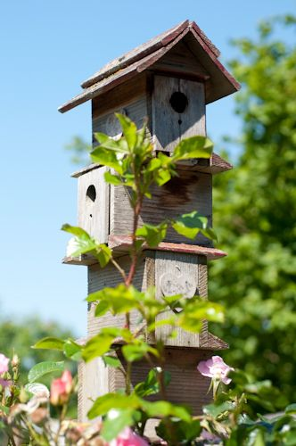 Best 25 Best Ideas About Decorative Bird Houses On Pinterest This Month