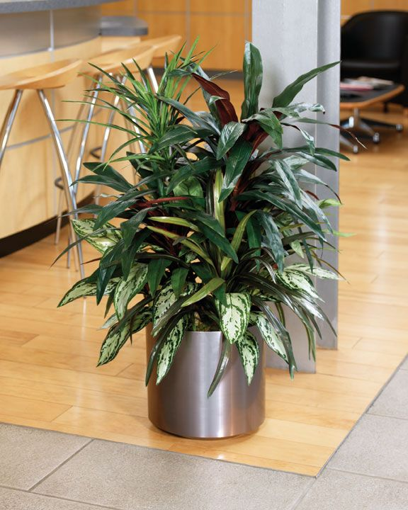 Best 18 Best Artificial Trees Plants Images On Pinterest This Month