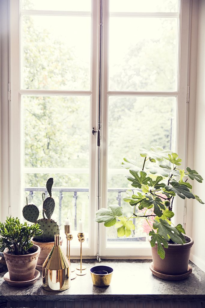 Best 25 Best Ideas About Window Sill Decor On Pinterest This Month