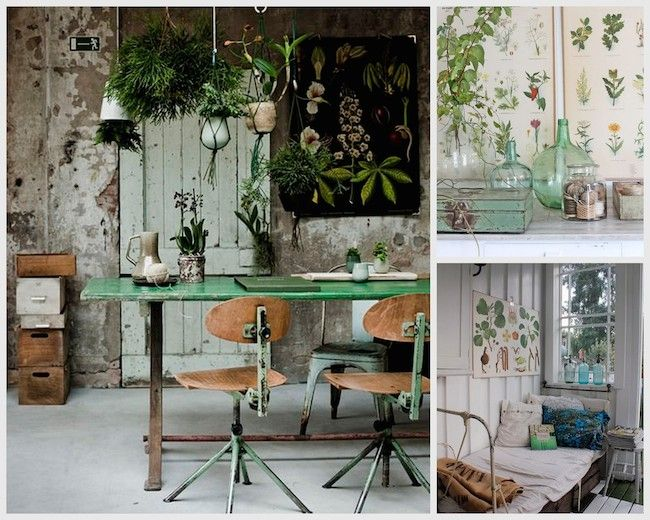 Best 1000 Images About Wild About Botanicals On Pinterest This Month