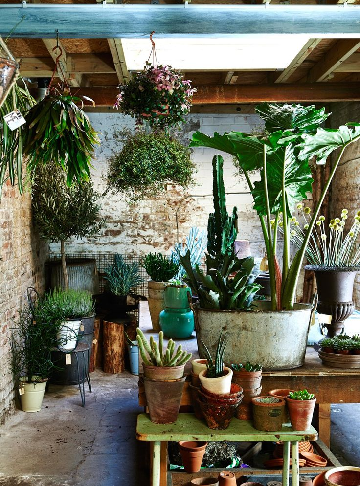 Best 7 Easy Ways To Create Botanical Style At Home Industrial This Month