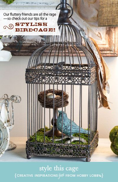 Best 25 Best Ideas About Bird Cage Decoration On Pinterest This Month
