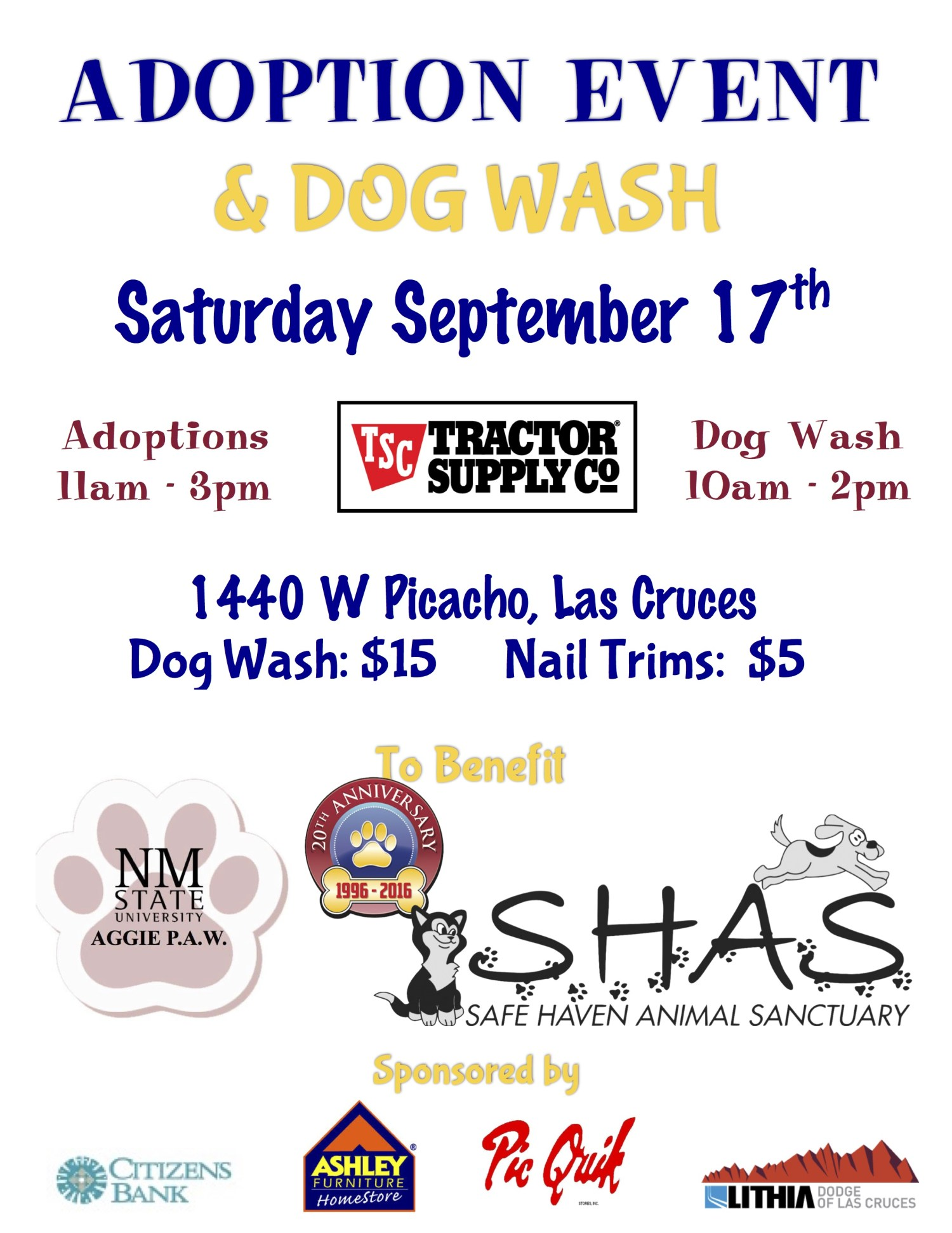 adopt-dog-wash-sept-2016