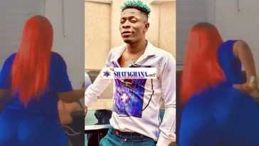 Shatta Wale Reveals Another Daughter Of His As She Displays Her Heavy 'Goods', Dancing To 'Miss Money'