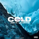 Joey B – Cold Ft Sarkodie (Prod By DJ Krept)