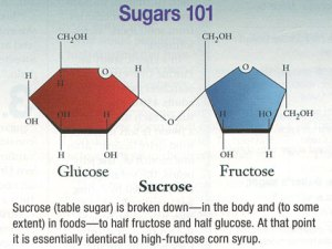 sugars101