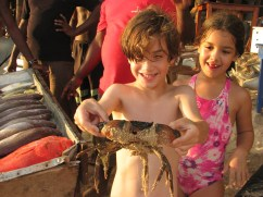 After a couple of my teacher friends' kids spent the afternoon playing with this crab, Shaun and I ate it for dinner!