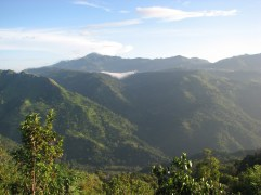 The view from Amba Tea Estate - not bad to wake up to...