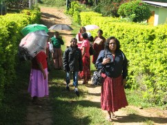 The Mulleriyawa ladies arrive at the tea estate wearing their Sunday best.