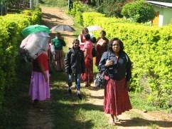 The Mulleriyawa ladies arrive at the tea estate wearing their Sunday best.
