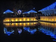 This is the temple on Beira Lake in downtown Colombo all lit up.