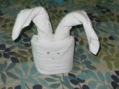 A bunny.