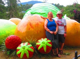 Fruit pic in the Cameron Highlands.