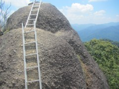 This ladder leads to the very top of Gunung Kutu. The students were all incredibly proud that they made it!