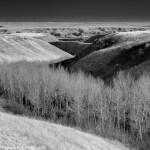 Silver Valley, Drumheller Alberta. Shaun Merrigan Landscapes Alberta