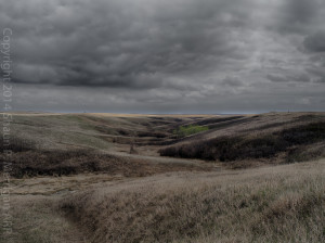 Open Alberta Prairie near Gartly, AB