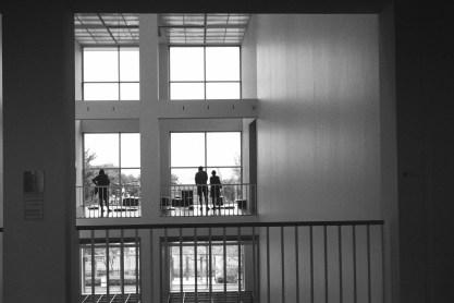 Windows and visitors at MCA