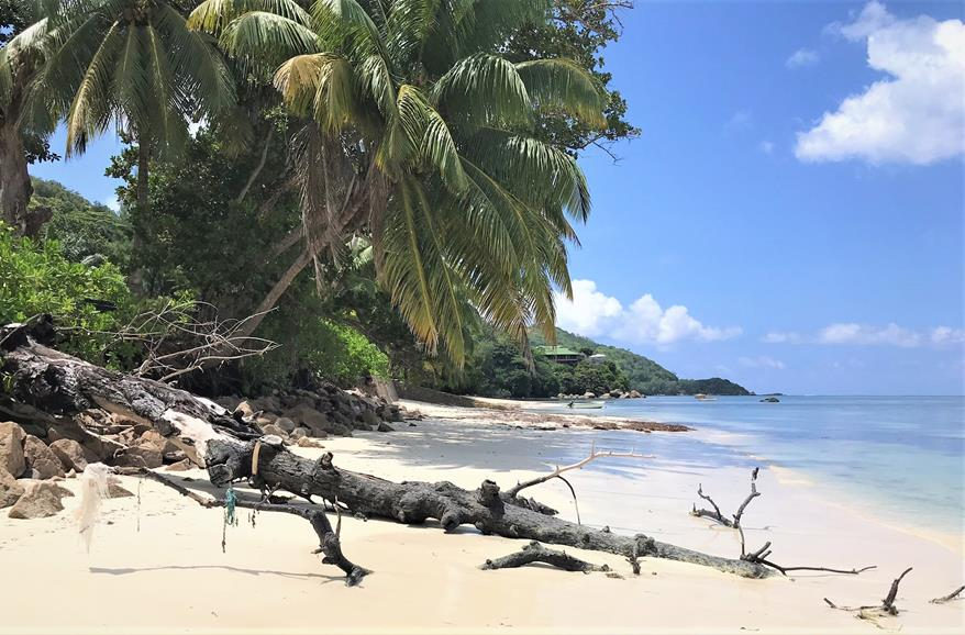 One of beautiful beaches in Praslin Seychelles