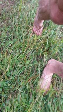 Path Piz Boe Alpine Lounge Barefoot Long