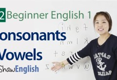Consonants / Vowels