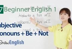 Subjective Pronouns + Be + Not