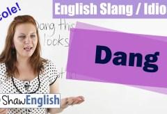 English Slang / Idioms: Dang