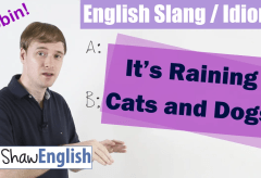 English Slang / Idioms: It's Raining Cats and Dogs