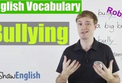 Using 'Bully' 'Bullying' in English
