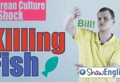 Culture Shock Korea: Killing Fish