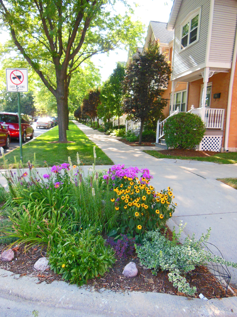 Guerrilla Gardener Has To Pay City Fees And Wants To Make